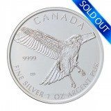 Canadian Silver Red Tailed Hawk 1 oz